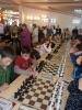 Чемпионат России по шахматам в ЛОО с 15 по 28 апреля 2013 г
